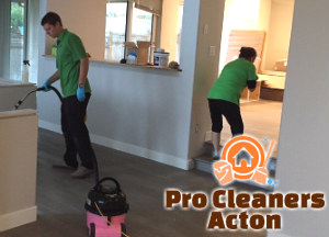 Professional Cleaners W3