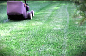 lawn-mowing-services-area